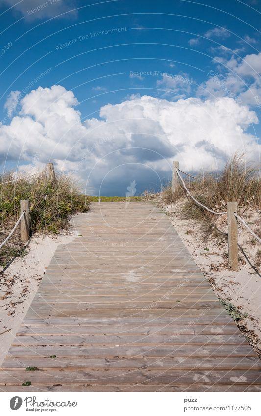 Der Weg Ferien & Urlaub & Reisen Tourismus Ferne Sommer Sommerurlaub Strand Meer Umwelt Natur Landschaft Sand Luft Himmel Wolken Sonne Schönes Wetter Insel