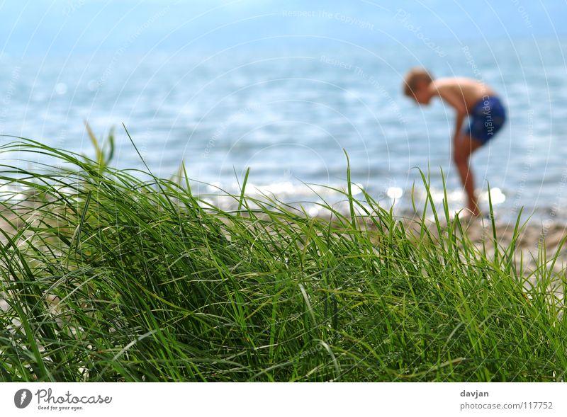 Spurensuche Kind Wasser grün blau Sommer Meer Ferien & Urlaub & Reisen Junge Gras Glück Küste Wellen Suche Stranddüne Konzentration Unbeschwertheit