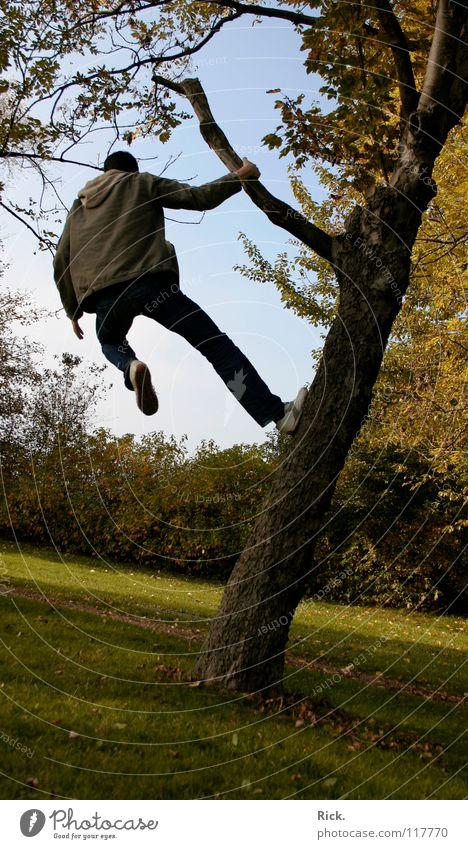 .Kletterbaum Nr. 2 Baum springen Herbst gelb Kerl Wiese Halt Situation Aktion Blatt Baumrinde Stimmung Schuhe Holzmehl Himmel grün verrückt Stativ Leben Mann