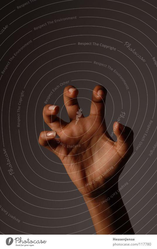 Hand 10 Finger Gefühle einheitlich widersetzen Rede Diskurs geben bedeuten Aktion Zusammensein Wachstum Götter Allah Hintergrundbild links Schmuck rechts