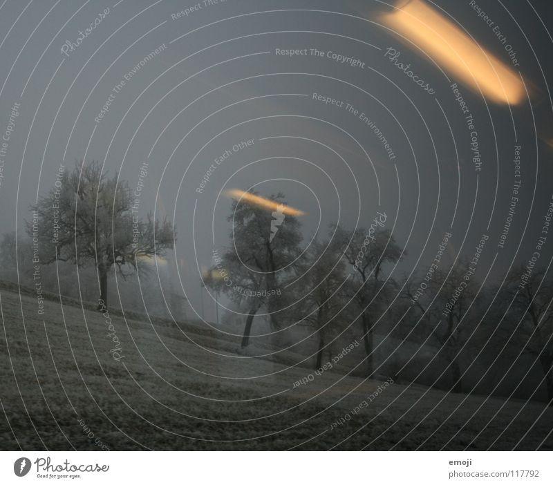 Wir treffen in Lenzburg ein. Endstation. Eisenbahn fahren Winter trist Ödland Schnee Nebel Bahnfahren Licht Reflexion & Spiegelung Beleuchtung kalt Baum Feld