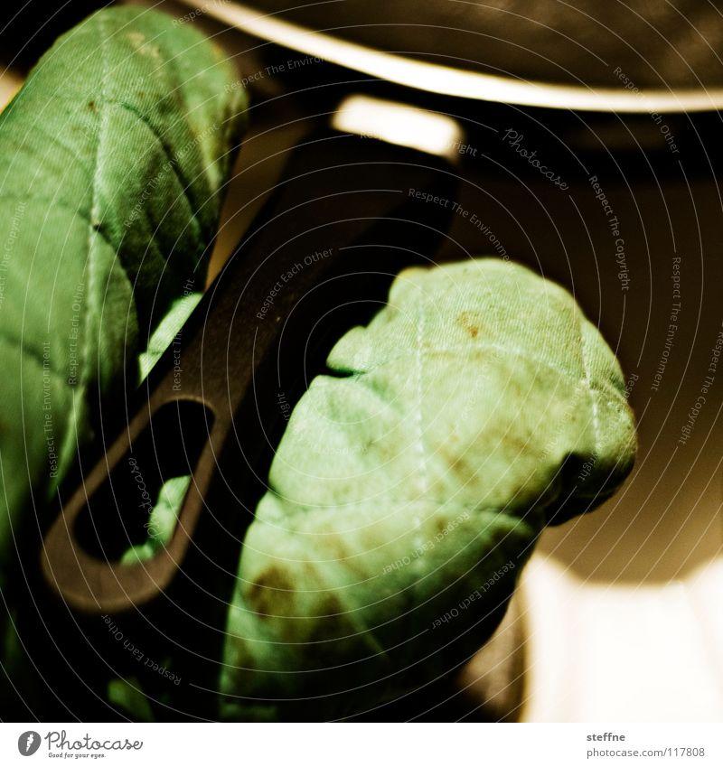 Oberpfannenstiel Pfanne Griff Küche Physik Hand brennen heiß lecker Ernährung Geschmackssinn Koch Handschuhe grün schwarz weiß Stil Stillleben Gastronomie