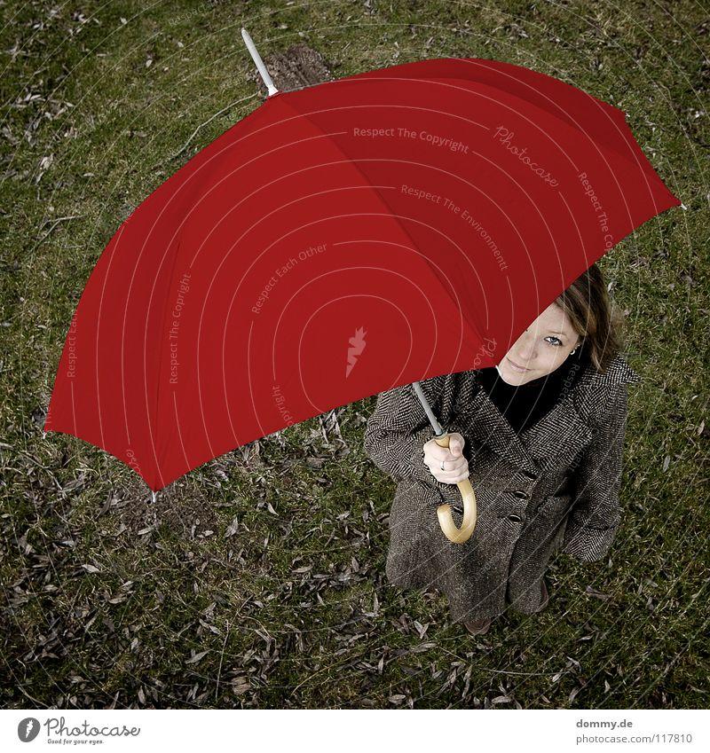 hello alice Frau Hand schön grün rot Freude Blatt dunkel Herbst oben Holz Vogel blond Arme Rasen Regenschirm