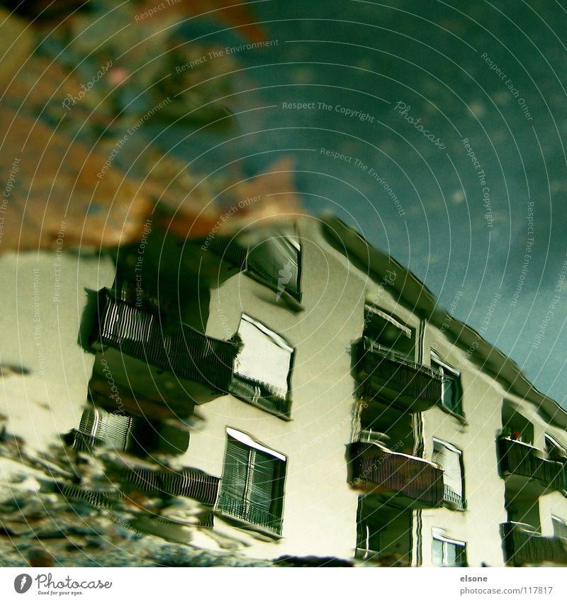 ::SCHLUSS MIT HERBST ENDGÜLTIG:: Haus Gebäude Stadthaus Lebewesen Häusliches Leben Balkon falsch nass Pfütze Herbst Blatt Reflexion & Spiegelung Wasser hausen