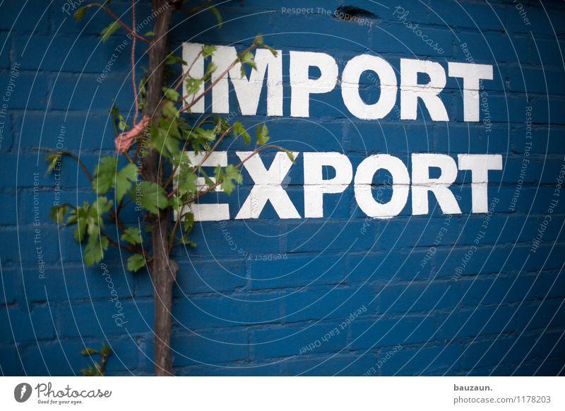 ut köln | stammheim | rein oder raus. Industrie Handel Business Mittelstand Unternehmen Pflanze Baum Blatt Mauer Wand Fassade Zeichen Schriftzeichen