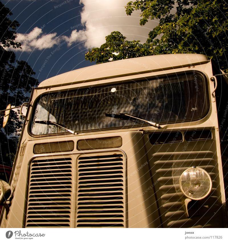 Frei Schnauze ausgemustert Außenaufnahme Design eckig Kastenwagen Kühlergrill Lastwagen Lüftungsschlitz Oldtimer Scheibenwischer stilllegen Transporter