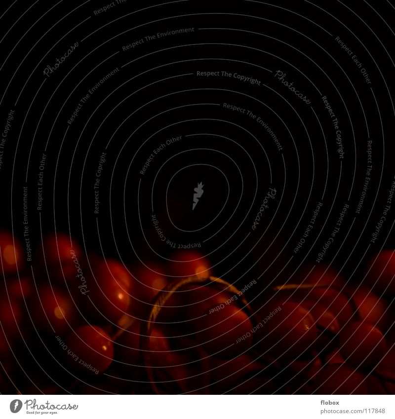 BONBONS Dekoration & Verzierung dunkel rot Licht schwarz Weihnachtsdekoration süß lecker Schmuck Pflanze Wachstum hellrot Sträucher Baumschmuck Frucht