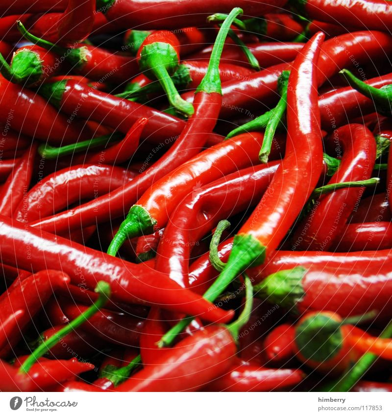 peperonicase Pflanze rot Ernährung Brand Kochen & Garen & Backen Scharfer Geschmack Kräuter & Gewürze Gemüse Mahlzeit Geschmackssinn Chili Peperoni Zutaten
