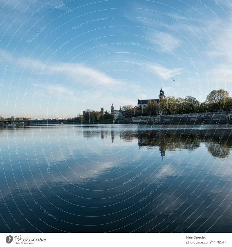 Weichselmorgen Baum Flussufer Fluß Wisla Krakow Stadt Stadtzentrum Altstadt Kirche Burg oder Schloss Gebäude Sehenswürdigkeit frisch schön blau Morgendämmerung