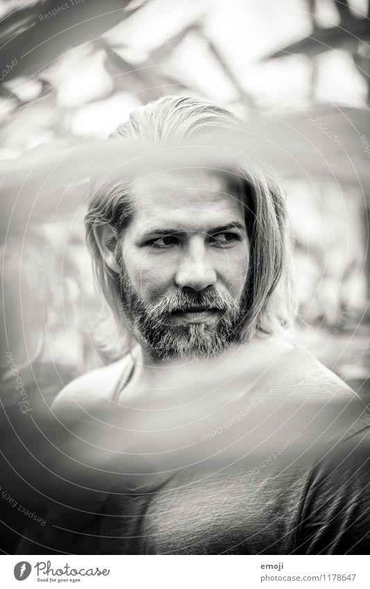 dazwischen Mensch Jugendliche schön Junger Mann 18-30 Jahre Erwachsene Gesicht maskulin trendy Bart