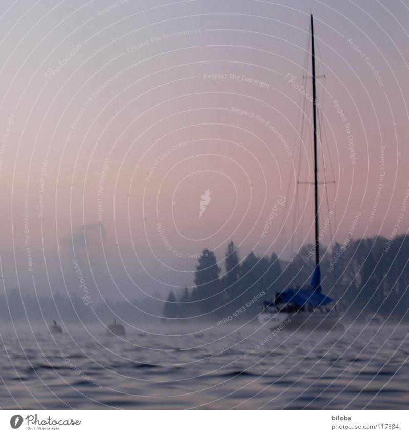 Boat III Wasserfahrzeug Segelboot liquide kalt tief See Schweiz Wellen Wald Nebel Stimmung unberührt harmonisch Winter ruhig gleiten Gewässer teuer wiegen