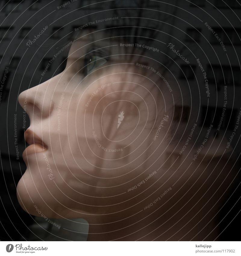 miss berlin Schaufenster Lippen Frau Wimpern Schminke bewegungslos Licht Haus Fassade schön Puppe Fensterscheibe schaufensterscheibe Mund woman top model Nase