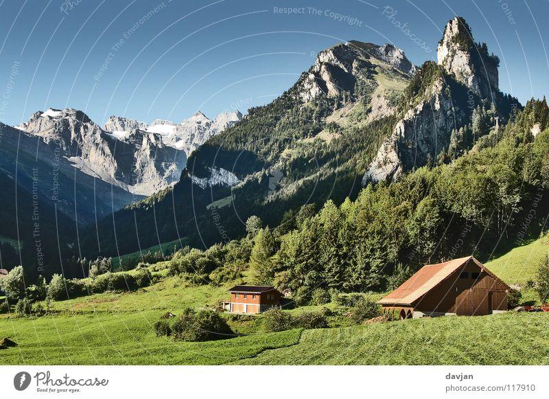 Postkartenidylle Ferien & Urlaub & Reisen schön Sommer Baum Berge u. Gebirge Wiese Gras Schnee Gesundheit Felsen Luft Landwirtschaft Kitsch Wohlgefühl Bauernhof Schweiz