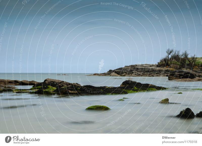 Normandie Ferien & Urlaub & Reisen Abenteuer Ferne Freiheit Strand Meer Insel Wellen Umwelt Natur Landschaft Wasser Sträucher Bucht Nordsee beobachten berühren