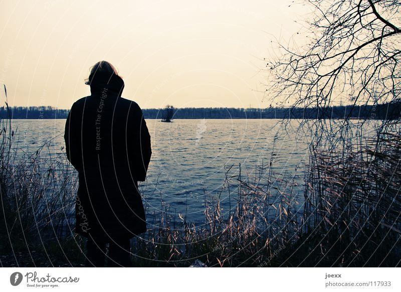 Sehnsucht Einsamkeit Frau frieren Denken Herbst Hoffnung kalt Mantel See Trauer Aussicht Winter Verzweiflung abschweifen Himmel nachdenkichkeit sehnsuchtsvoll