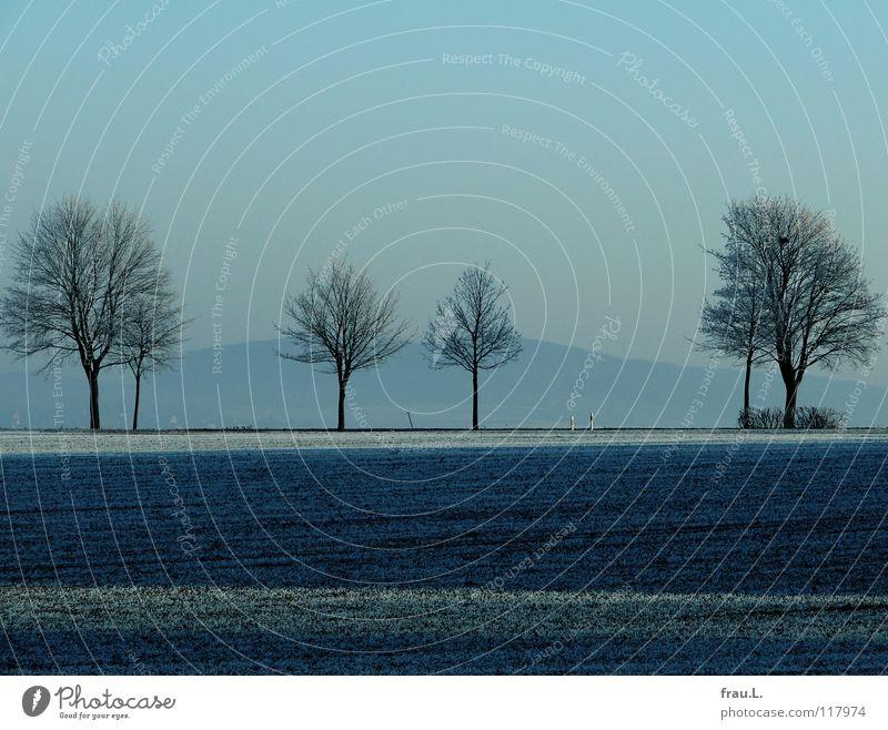 blau Degersen Himmel Baum Einsamkeit ruhig Wolken Winter kalt Schnee Feld Spaziergang Heimat schlechtes Wetter Raureif Landstraße besinnlich