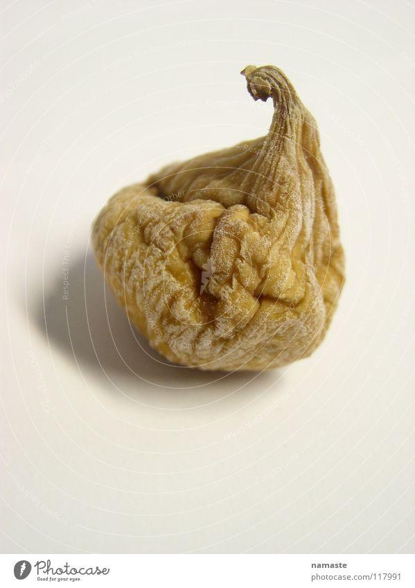 ein feiges leben....1 getrocknet braun beige Ocker Trockenfrüchte Frucht Angst Panik Feige Falte runzeln lebenseinstellung