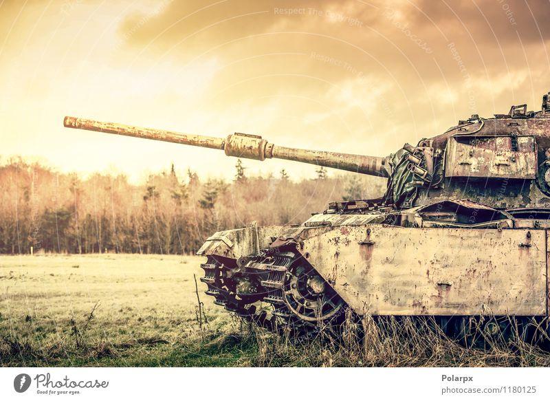 Tank auf einem Feld Natur alt grün Baum Landschaft Wald Herbst Gras Verkehr Aussicht retro historisch Camping Krieg Motor horizontal