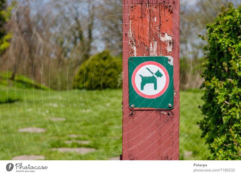 Hund in einem Leinezeichen Tier Park Wege & Pfade Haustier Hinweisschild Warnschild Sauberkeit rot schwarz weiß Sicherheit Vorsicht Pfosten Zeichen anleinen
