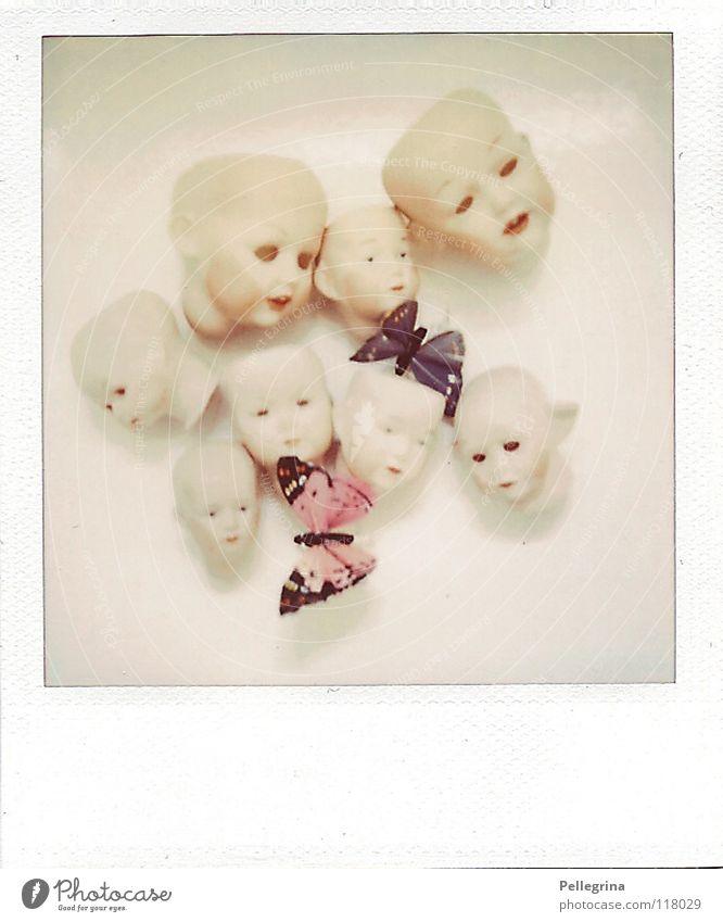 der haufen alt blau Einsamkeit Kopf rosa fliegen Filmmaterial Polaroid kaputt Flügel gruselig Schmetterling Geschirr obskur Puppe