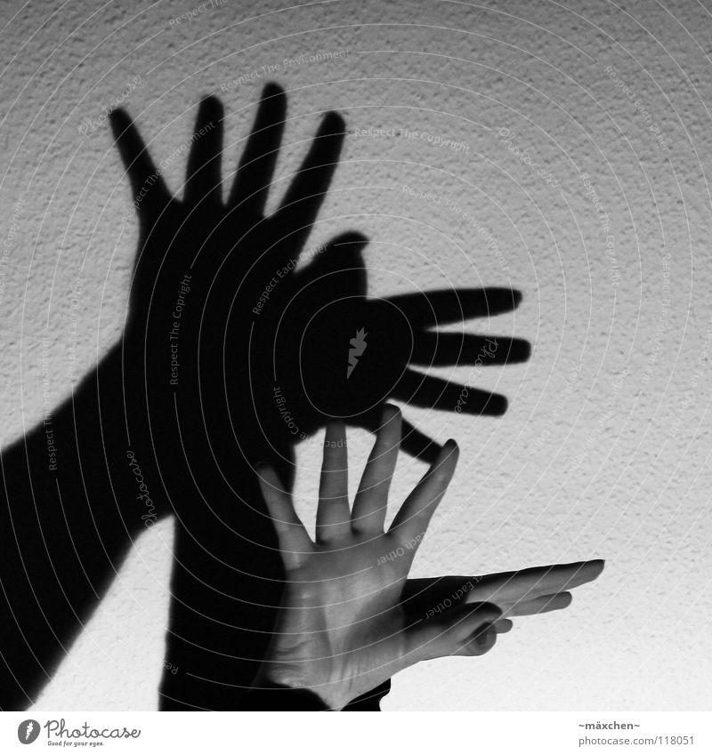 Schattenvogel Hand weiß schwarz dunkel feminin Wand Bewegung Freiheit grau Vogel hell Haut Finger trist Flügel Falte