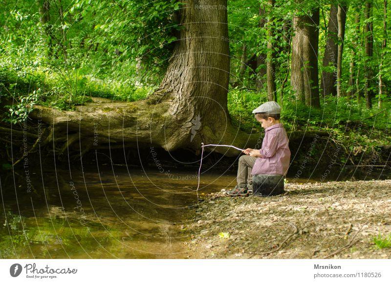 Angelnd Mensch Kind Natur Baum Einsamkeit Freude Wald Frühling Junge Spielen Glück Kindheit Schnur Mütze Flussufer Kleinkind