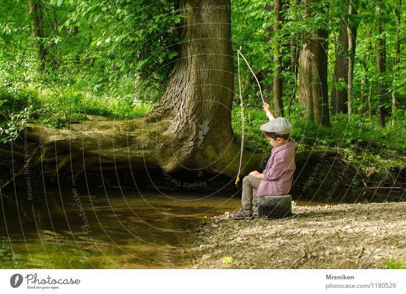 Angeln Kind Kleinkind Junge Kindheit 1 Mensch 1-3 Jahre 3-8 Jahre Natur Frühling Sommer Baum Farn Wald Bach Fluss Blick authentisch niedlich Angelrute Spielen
