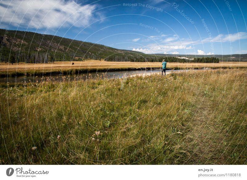 Sicherheitsabstand Mensch Himmel Natur Ferien & Urlaub & Reisen Mann Sommer Landschaft Tier Wald Erwachsene Wiese Wege & Pfade maskulin Idylle Tourismus