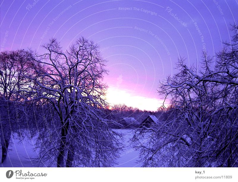 Nordic Winter Sonne kalt Schnee Norden Niedersachsen