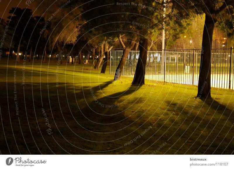 Safa Park 001 Dubai Nacht Baum Zaun Sportplatz Flutlicht Spielen Grass Rasen Schatten Basketball