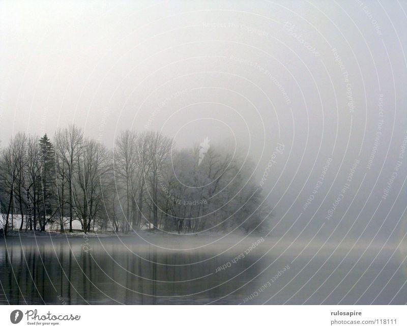 Silent Lake II Natur Wasser Himmel Baum Sonne Winter ruhig schwarz Wolken kalt Berge u. Gebirge Freiheit grau See Nebel geschlossen