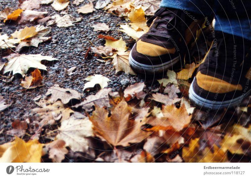 Tarnung Blatt ruhig Herbst Schuhe