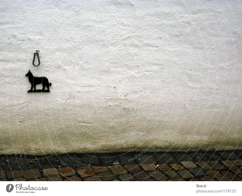 Pfötchenhotel ***** weiß schwarz Wand Hund Mauer Fassade leer trist verfallen Zeichen Hinweisschild Symbole & Metaphern tierisch Kopfsteinpflaster Haustier Putz
