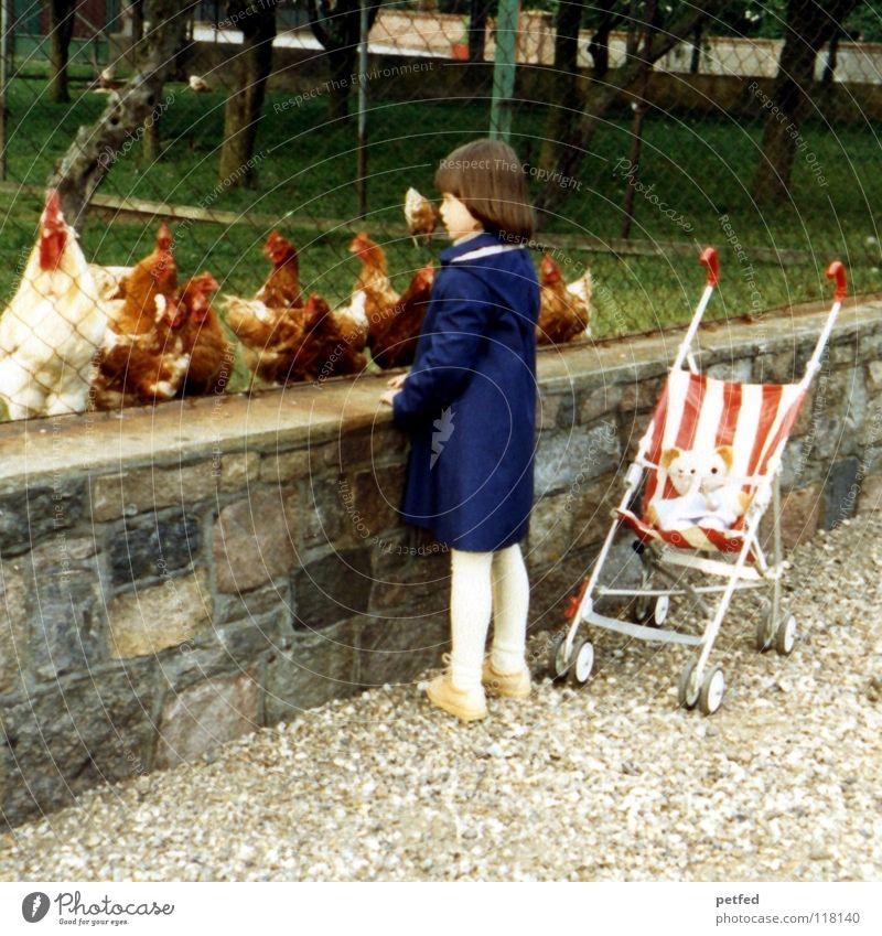 Flocki und ich bei den Hühnern Kind Ferien & Urlaub & Reisen Mädchen Tier klein Kindheitserinnerung Spaziergang beobachten Neugier Kleinkind Bauernhof