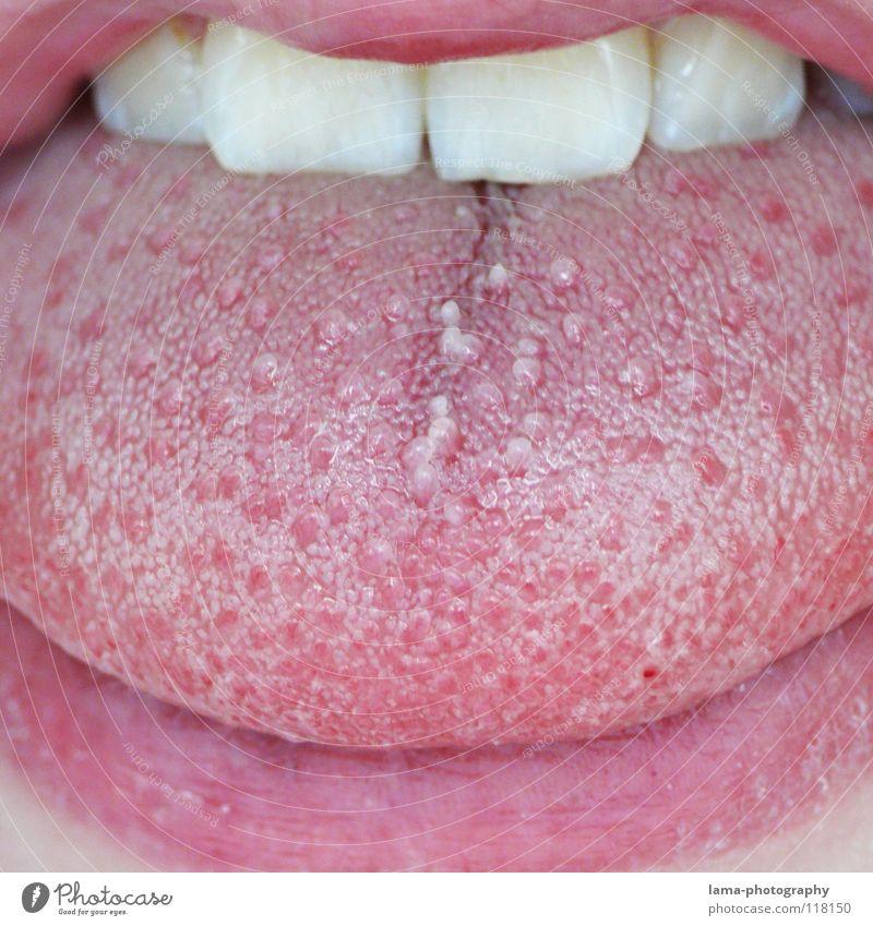 Doktorspielchen für Bärtchen-Hasser Mann rot Ernährung sprechen Gefühle Kopf Gesundheit rosa Mund Haut nass Zähne Lippen berühren trocken Bart