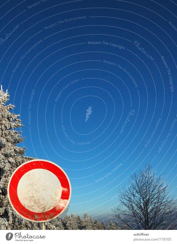 Du kummst hier ned rein! Himmel weiß Baum blau rot Winter Ferne kalt Schnee Berge u. Gebirge Freiheit Eis Nebel Schilder & Markierungen Niveau Tanne