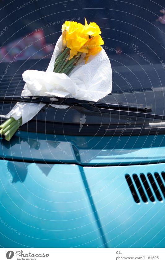 blumengruß blau Blume gelb Blüte Autofenster PKW Verkehr Blühend Geschenk Autofahren Sympathie Verkehrsmittel Gruß Scheibenwischer