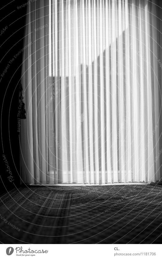 vorhang Häusliches Leben Wohnung Dekoration & Verzierung Raum Fenster Gardine Teppich ruhig Traurigkeit Einsamkeit Langeweile Schwarzweißfoto Innenaufnahme