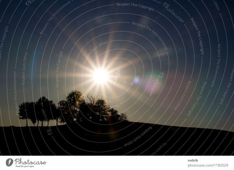 Abendsonne Himmel Natur blau Sommer weiß Sonne Baum Erholung Landschaft Ferne schwarz Frühling Gefühle Freiheit Horizont Feld