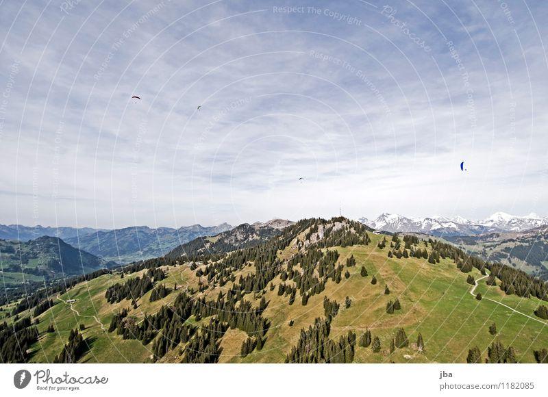 Soaring am Hornberg 11 Lifestyle Zufriedenheit Erholung ruhig Freizeit & Hobby Freiheit Sommer Berge u. Gebirge Sport Gleitschirmfliegen Sportstätten Natur
