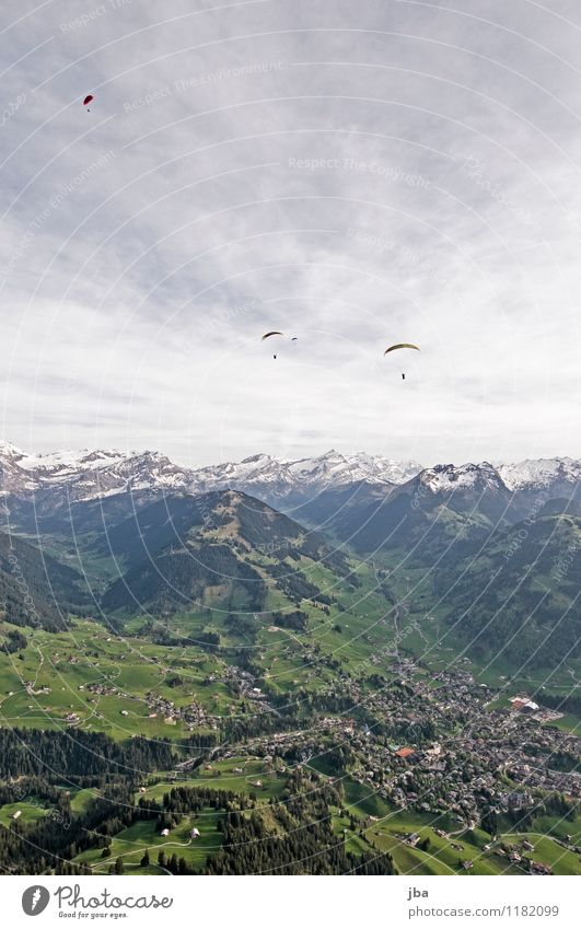 Soaring am Hornberg 6 Lifestyle Zufriedenheit Erholung ruhig Freizeit & Hobby Freiheit Sommer Berge u. Gebirge Sport Gleitschirmfliegen Sportstätten Natur