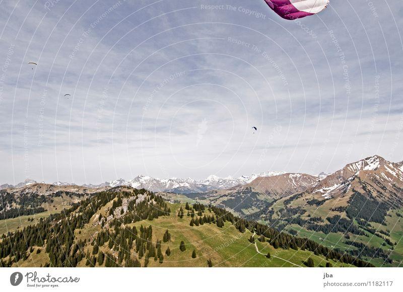 Soaring am Hornberg 10 Lifestyle Zufriedenheit Erholung ruhig Freizeit & Hobby Freiheit Sommer Berge u. Gebirge Sport Gleitschirmfliegen Sportstätten Natur