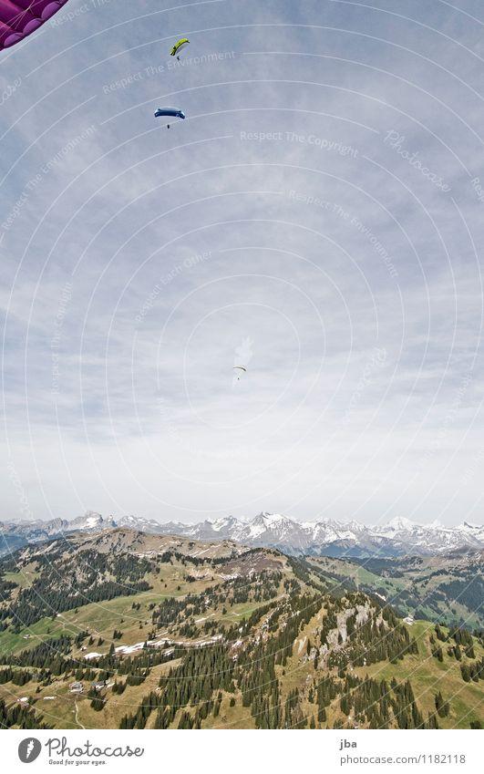 Soaring am Hornberg 8 Natur Sommer Erholung ruhig Berge u. Gebirge Frühling Sport Freiheit fliegen Lifestyle Freizeit & Hobby Zufriedenheit Luft Luftverkehr genießen Urelemente