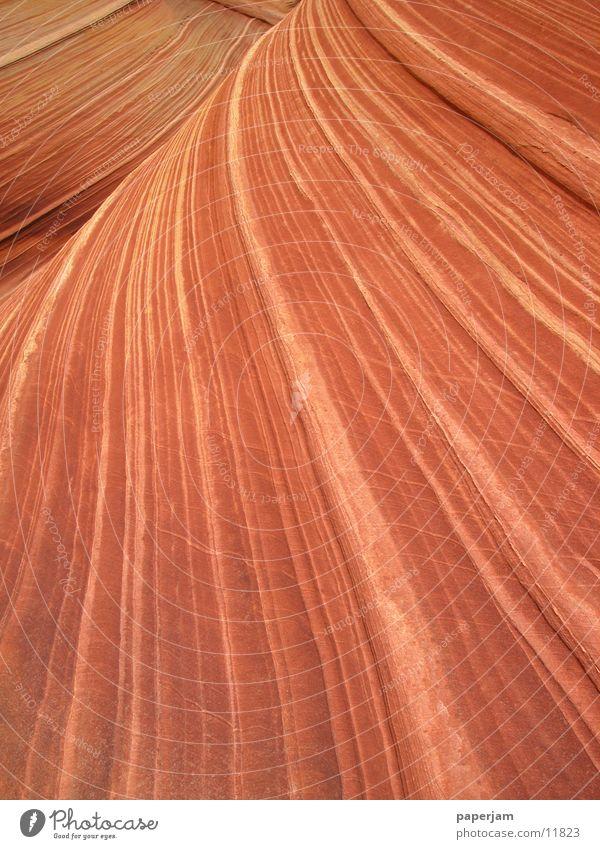 The Wave 3 Erosion Coyote Buttes Nordamerika Felsen Stein Landschaft Natur