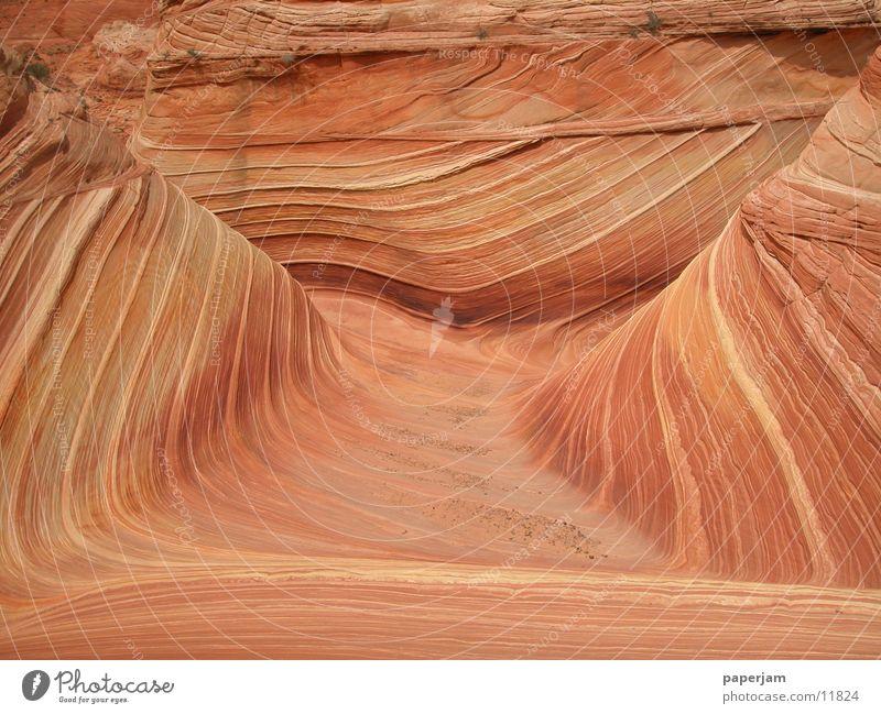 The Wave 2 Erosion Coyote Buttes Felsen Stein Landschaft Natur Geologie Vermilion Cliffs National Monument Zentralperspektive Menschenleer Naturwunder