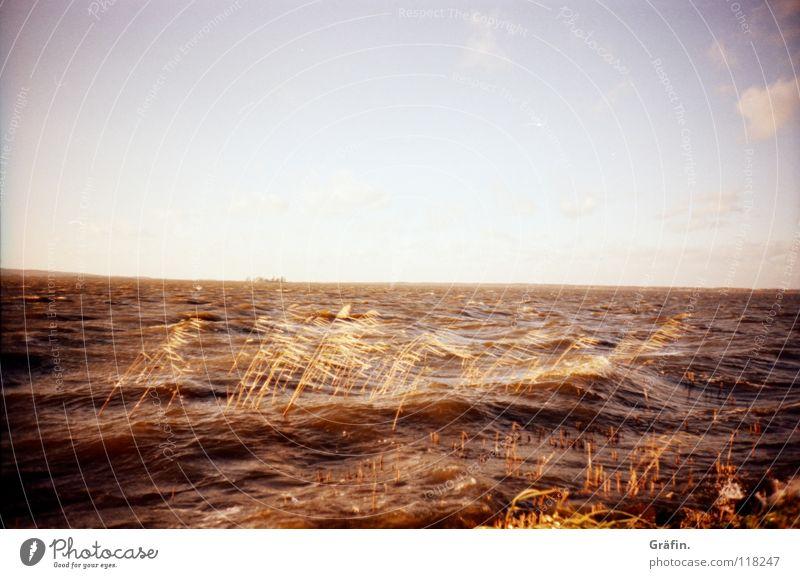 Aufgewühlt Wasser Himmel Meer Winter Wolken Ferne See Wellen Wind Horizont Sehnsucht Sturm Schilfrohr Hannover Blauer Himmel Festung