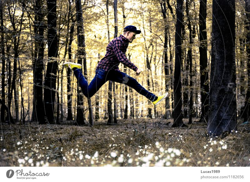 Waldsprung Mensch Kind Natur Jugendliche Mann Pflanze Baum Junger Mann Freude 18-30 Jahre Wald Erwachsene Sport Glück springen maskulin