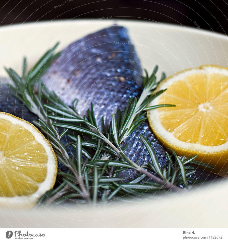 FrischeFische frisch authentisch Ernährung genießen Kräuter & Gewürze lecker Schalen & Schüsseln Zitrone roh Rosmarin Grillsaison