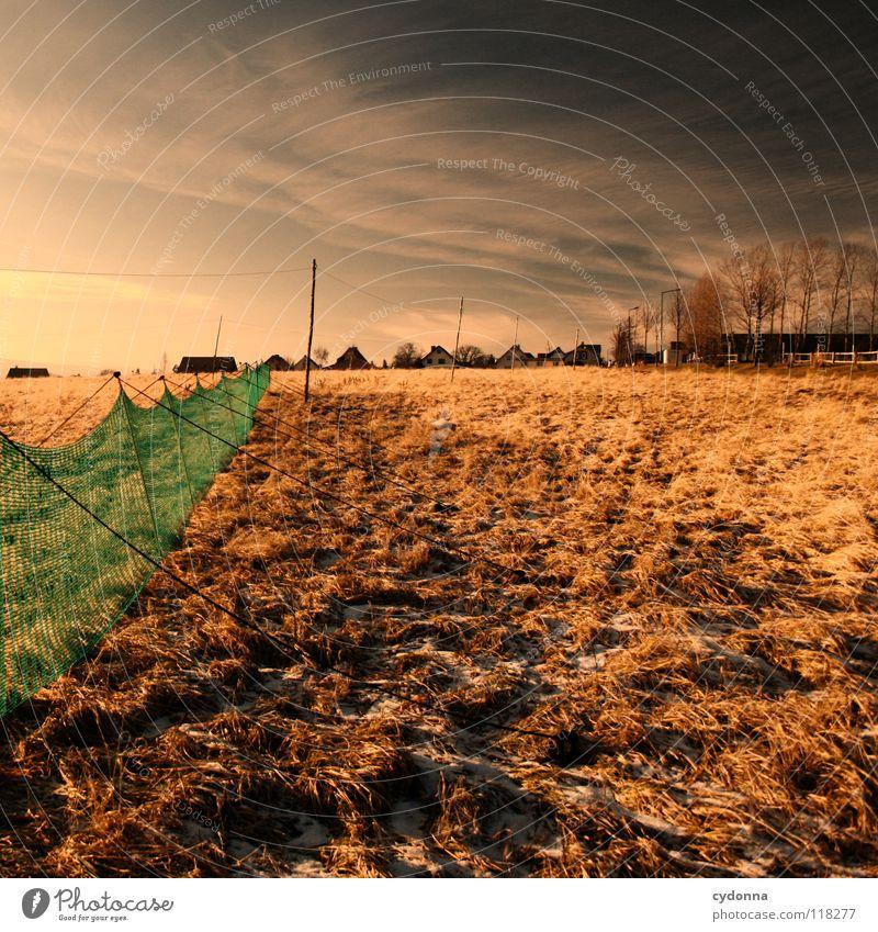 Between Colours Winter kalt Einsamkeit ruhig Wiese grün gefroren Stimmung Sehnsucht Feld Wolken schlechtes Wetter Erscheinung Horizont Dorf Ferne Haus