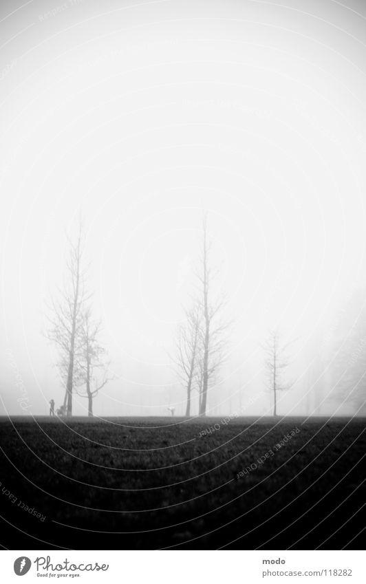 Nebel Mensch Baum Winter Wolken Wiese Herbst laufen hoch Trauer Rasen Englischer Garten